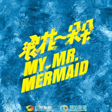 My Mr Mermaid - logo